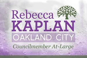 Rebecca Kaplan: Political Campaign